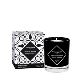 Graphic Collection Candle - Zest of Verbena