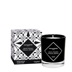 Graphic Collection Candle - Precious Jasmine